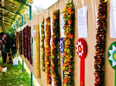 May Day is lei in Hawaii
