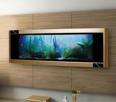 sleek in wall fish tank