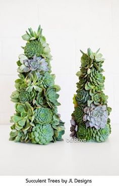 Albero di Natale con piante grasse Succulent Christmas Trees (and instructions for DIY) - Succulent Trees by JL Designs Holiday Tree, Christmas Trees, Christmas Crafts, Christmas Decorations, Christmas Ornament, Cacti And Succulents, Planting Succulents, Succulent Tree, California Christmas