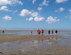 Een stukje #Wadlopen tijdens een #zeiltocht. #Waddenzee #droogvalen #zeilen
