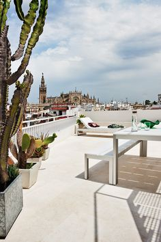 ¡Guau! - AD España, © manolo yllera La terraza con Muebles de Gandía Blasco y espectaculares vistas a la catedral sevillana. Foto manolo yllera