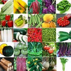 Various Heirloom Garden Vegetable Seed Non-GMO Seeds Bank Survival Organic Plant #UnbrandedGeneric