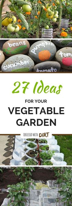 27 of the best vegetable garden ideas using recycled materials that you can find anywhere. Make your own fertilizer and weed killers, grow more food in small spaces and more vegetable garden ideas! Check it out