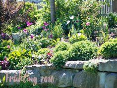 Lovely Skandinavisches Wohnen wohnen in weiss shabby chic Schwedenhaus Green Gate Cottage TrockenmauerCottage GartenSkandinavisch