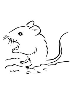 deer mouse printable coloring pages - photo#5