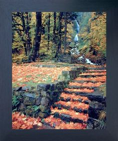 Waterfall and Fallen Autumn Leaves On Steps Scenery Nature Wall Decor Art Print Poster Scenery Pictures, Art Pictures, Framed Pictures, Poster Prints, Framed Prints, Art Prints, Framed Wall, Art Posters, Poster Wall