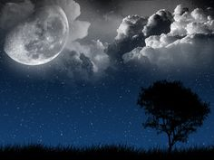 This is an image that my new Tattoo is based off of.  Next Vector Night Sky  by ~ciaastek over at DeviantArt.com