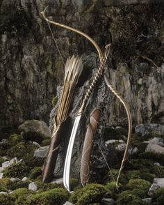 Bow & Arrows