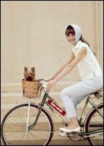 Dans le panier, un petit toutou, son yorkshire prénommé Famous, ravi de faire un tour sur la bicyclette d'Audrey Hepburn le panier, la bicyclett, de fair, dan le, amaz pictur, sur la