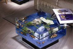 All about Aquarium in brief; An aquarium is a nice addition to decorate your home. The design of the aquarium, the plants and the colors of the fish of your aquarium a true centerpiece. Table Aquarium, Aquarium Mural, Aquarium Fish, Aquarium Stand, Acrylic Aquarium, Glass Aquarium, Aquarium Lighting, Fish Tank Table, Fish Tank Coffee Table