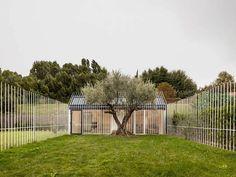 """""""Uma casa para uma pessoa e uma árvore"""". Foi esse o nome dado ao projeto desenvolvido pelo escritório espanholTaller Basico de Arquitectura"""