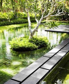 Biologischer Pool Garten Bäumen -nachhaltiger Bau