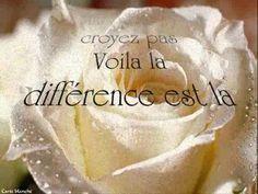 la différence  Sylvie Vartan