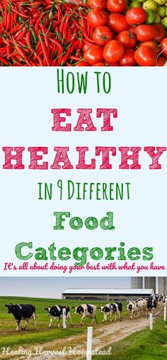 From BAD to BEST: How to Eat Healthy in 9 Different Food Categories (A Real Food Eating Guide Post)
