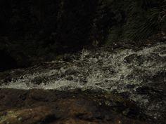Waterfall water. Waitakere Ranges, New Zealand.
