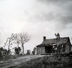 """Eudora Welty photo of a home with bottle trees in Simpson County. Welty used bottletrees in her short story """"Livvie."""" This photograph, like many others taken by Welty during her work for the Works Progress Administration in the 1930s, appears in One Time, One Place: Mississippi in the Depression: A Snapshot Album (Jackson: University Press of Mississippi, 1996)."""