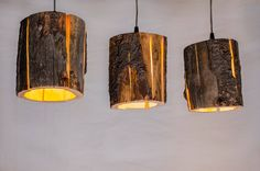 Ordinary tree stumps transformed into lamps… | Design Diffusion - Design Projects