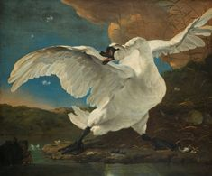 The Threatened Swan, Jan Asselijn, 1650