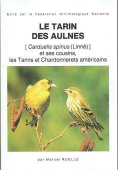 Afficher l'image d'origine Tarin Des Aulnes, Cousins, Animals, Goldfinch, Animales, Animaux, Animal, Animais