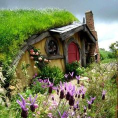 Hobbit House ,Rotura, New Zealand