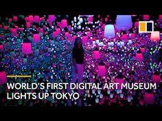 World's first digital art museum lights up Tokyo, Japan Digital Light, Digital Art, Japanese Museum, Japan Art, Tokyo Japan, Museum Lighting, Digital Storytelling, Digital Museum, Light Art