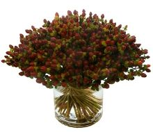 Google Image Result for http://www.michaelgeorgeflowers.com/images/sized/assets/images/flowers/Hybericum-Berry-220x190.jpg