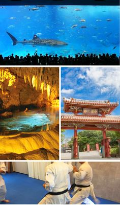 10 Things to do in Okinawa by Stuff To Do, Things To Do, Activities To Do, Travel Bugs, Okinawa Japan, Things To Make