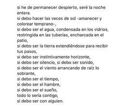 Amor, Frases