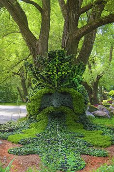 """Fantastical botanical garden sculptures: Green Man,"""" a medeival pagan god, is another part of the weaving """"Spirits of the Wood"""" installation by MIM. """"Green Man"""" is usually surrounded by oak leaves, considered an ancient sacred tree in Great Britain, and fully embodies the spirit of trees."""