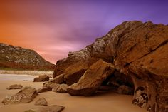 Between the rocks - null