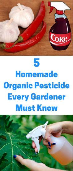 Organic Gardening Ideas 5 Homemade Organic Pesticide Every Gardener Must Know - Vegetable Gardening Tips and Tricks - Fruit Garden, Herb Garden, Balcony Garden, Garden Tips, Garden Tomatoes, Tomato Garden, Garden Table, Agriculture, Farming