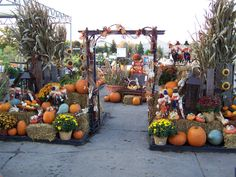 over done but I like the concept Pumpkin Display, Autumn Display, Fall Displays, Retail Displays, Store Displays, Scarecrows For Garden, Garden Center Displays, Planting Pumpkins, Fall Mums