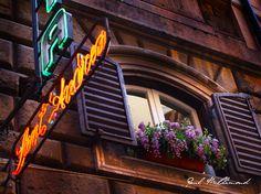 Rome Photo by Paul McClimond