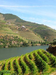 Douro #Portugal