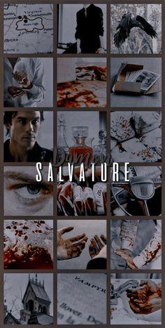 The Vampire Diaries Characters, Vampire Diaries Poster, Vampire Diaries Wallpaper, Vampire Diaries Funny, Vampire Diaries Cast, Vampire Diaries The Originals, Stefan Salvatore, Damon Salvatore Vampire Diaries, Ian Somerhalder Vampire Diaries