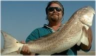 Me with a big bull redfish!   Check Out My Fishing Board!   http://pinterest.com/paulsales/pin-it-to-win-it-fishing-lures/  http://www.InTheWind.org