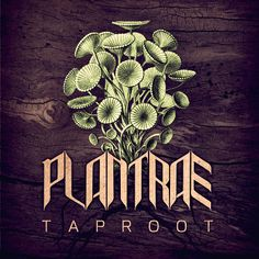 Taproot cover art