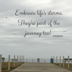 Embrace life's storms. They're part of the journey too! - Anonymous
