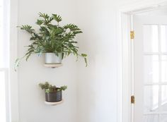 Perfect Andrew Deming And Rachel Gant Of YIELD Have Designed A Modern Wood Ring, Wall  Mounted Plant Holder, That Looks Like It Simply Floats On The Wall.