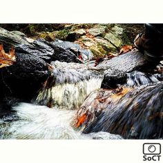 Connecticut  ✨ Photographer  @m_sheldon18  #ScenesofNewEngland  Pic of the Day  11.08.15 ✨ C o n g r a t u l a t i o n s ✨ ----------------------------------------- #scenesofCT  #granby #barhamsteadct #connecticut  #connecticut_potd #endersstateforest #endersfalls #hikect #getoutdoors #adventure #explore  #ig_ct #instaconnecti...