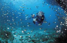 Scuba Diving at Thonga Beach Lodge in KwaZulu-Natal, South Africa