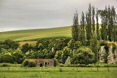 Waikato, North Island, New Zealand! So green, so beautiful