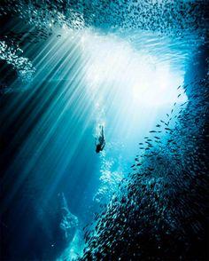 Kimi Werner est une amoureuse inconditionnelle de la nature, et plus particulièrement de l'océan. La jeune Hawaïenne est en effet championne d'apnée, une passion à laquelle elle s'adonne quotidiennement depuis son enfance. Kimi est égaleme...