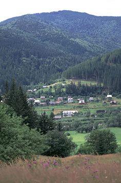 images of yaremcha ukraine   Photographs of the Carpathian Mountains in Western Ukraine