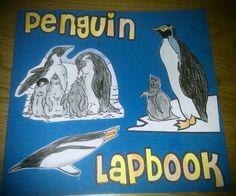Older Child Penguin Lapbook. Wonderful downloads.