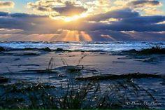 Morning at St Simons Island