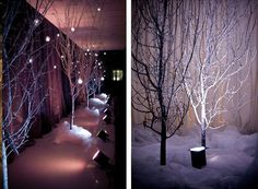 Neat use of #trees #uplighting for this #winter #backdrop! Photo via #emmaleedesign