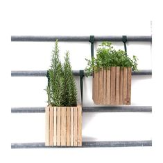 GrowOn + HoldOn - Hanging wooden planter box with self-watering system, 4 colours by Squarely Garden S, Winter Garden, Wooden Planter Boxes, Plant Box, Self Watering Planter, Balcony Railing, Aalborg, Harry Potter Diy, Wooden Diy