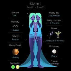 Gemini Art, Gemini Traits, Gemini Life, Gemini Quotes, Zodiac Sign Traits, Zodiac Signs Astrology, Gemini Zodiac, My Zodiac Sign, Aquarius