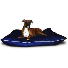 Durable Fabric Majestic Pet Large Pet Bed, 35' x 46' x 6' Blue -- See this awesome image  : Pet dog bedding